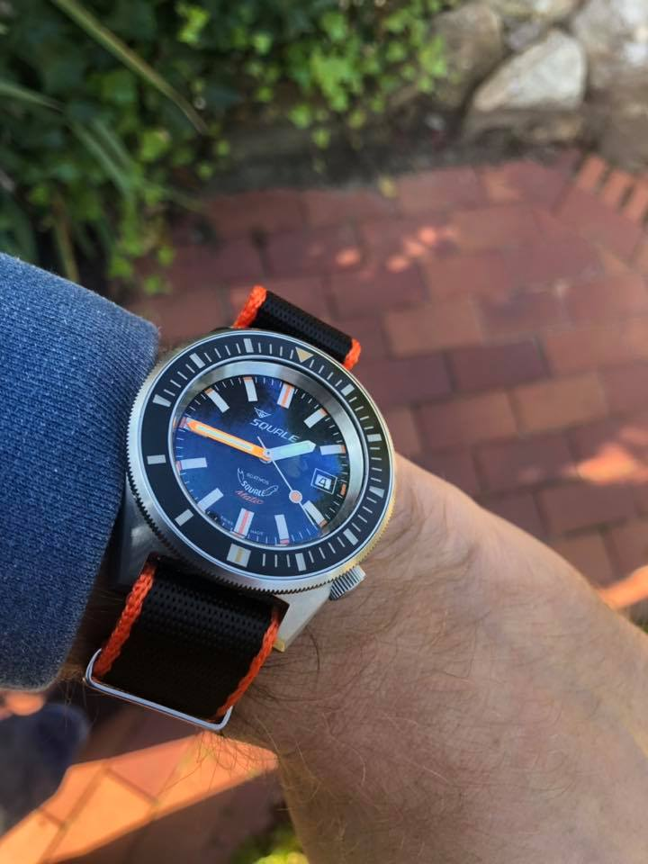 squale on a watchbandit strap